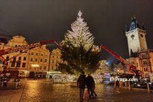 Segundo-dia-decoracion-arbol-de-Navidad-Praga