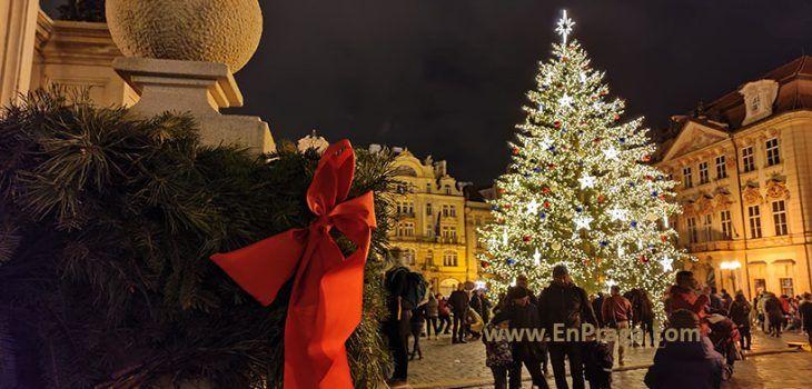 Los Praguenses Tienen Su árbol Navideño. ¿Tienes El Tuyo?